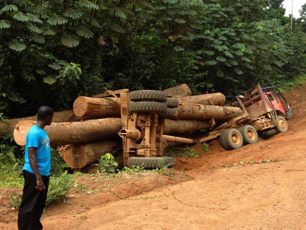 An overturned logging truck on the way to Grand Cess. With Emmanuel Urey. Gregg Mitman, January 12, 2014.