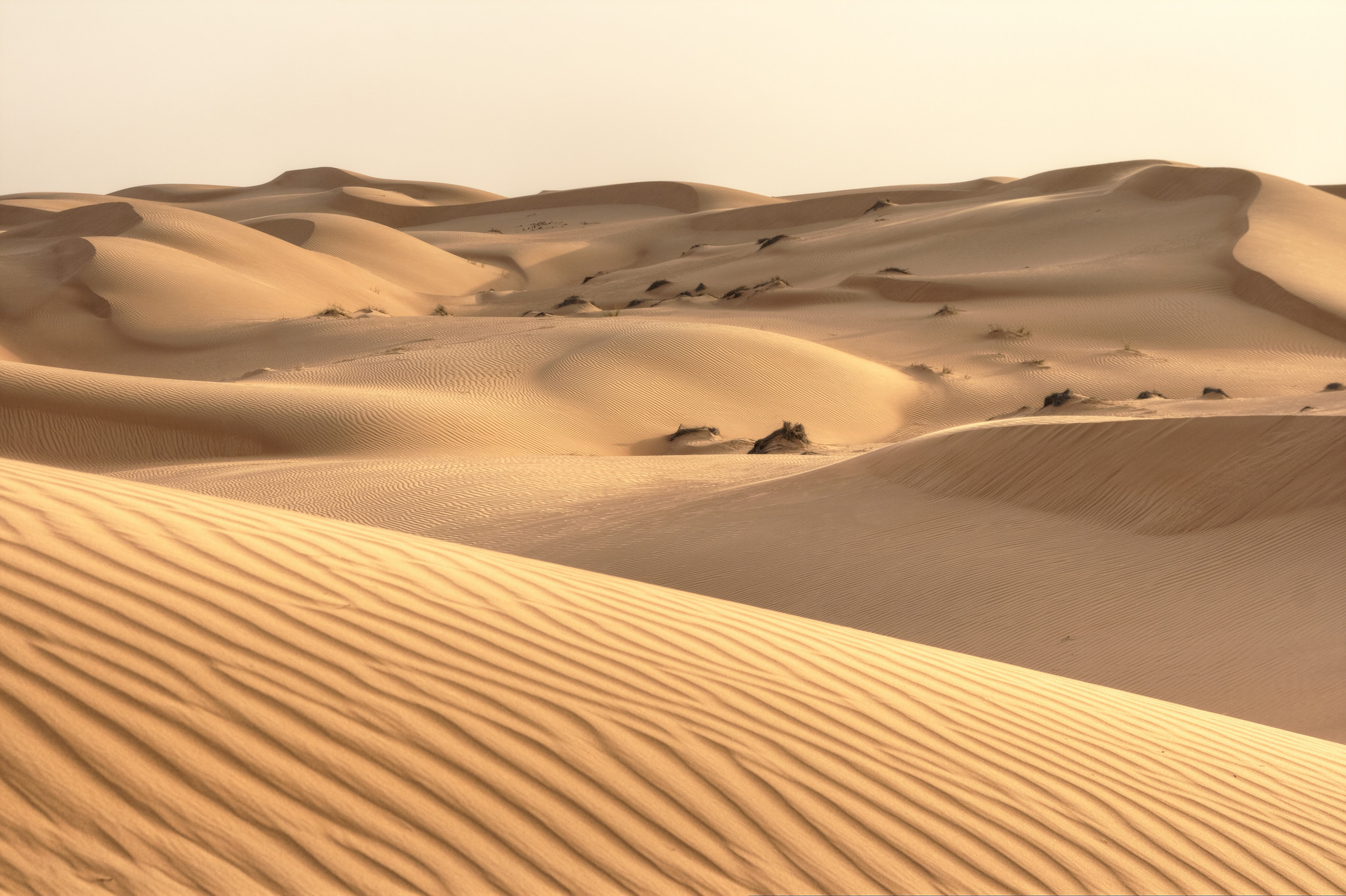 Picture Caption: Oman, Wahiba Sands. Photo by Nicolas Rénac on Flickr.
