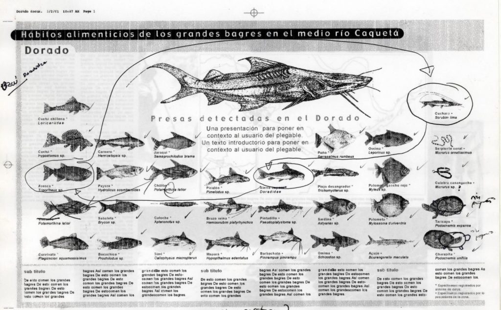 C:\Documents and Settings\All Users\Documentos\simposio peces\CUADRO HABITOS ALIMENTICIOS.jpg